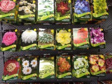 Растения в красочной упаковке